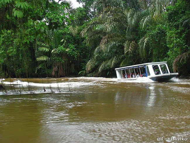 Tortuguero Costa Rica cómo llegar