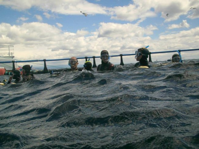 Nadadores atuneros combatiendo el oleaje de la piscina