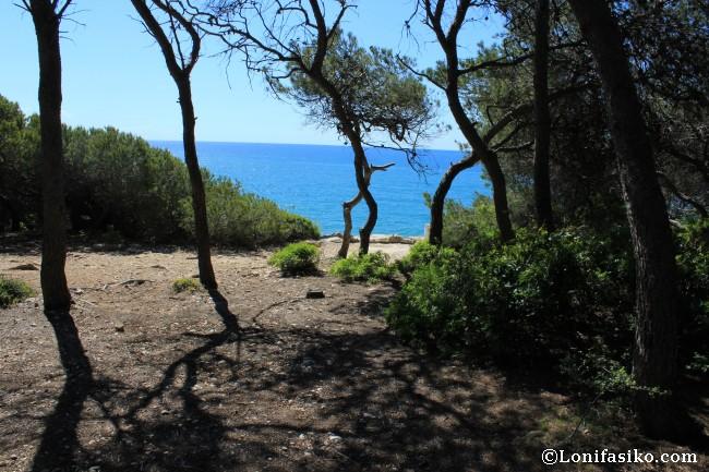 Senderismo Camí de Ronda Platja Llarga Castell Tamarit