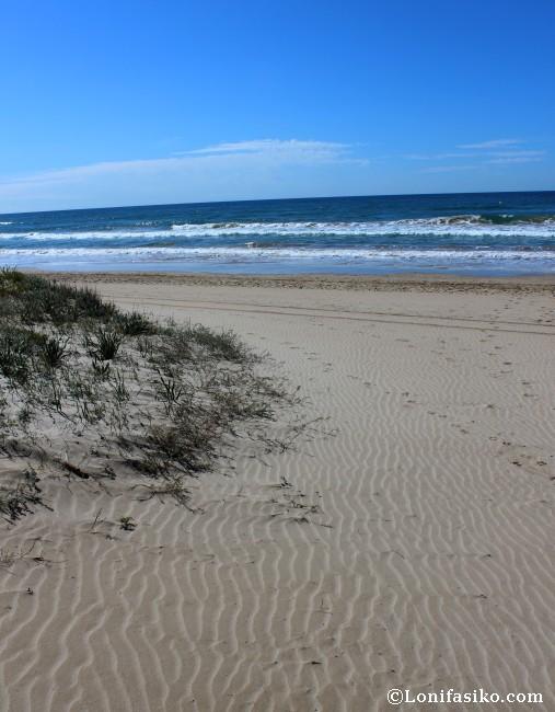 Platja Llarga ó Playa Larga, ruta senderismo Camí de Ronda Tarragona Tamarit