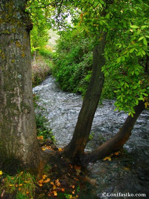 Caudal de agua potente en el tramo inicial del río Queiles
