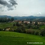 Paisaje verde sobre el barrio de Biañez