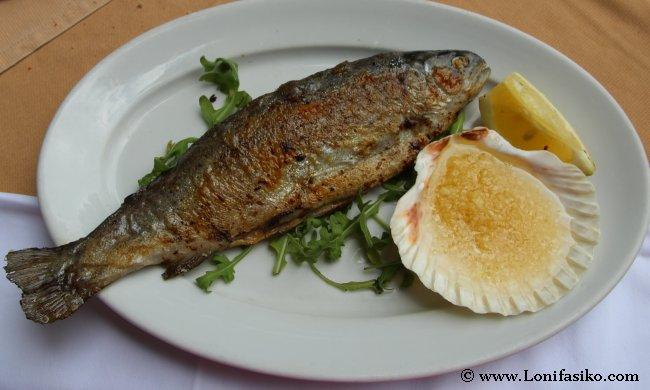 Comer pescado trucha en Eslovenia
