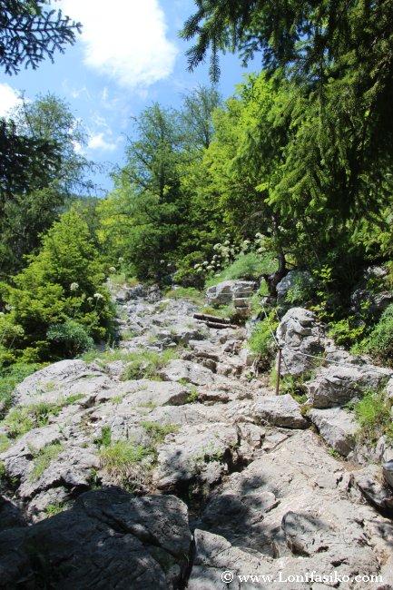 Primer tramo de cable metálico en el ascenso al nacimiento del río Soča