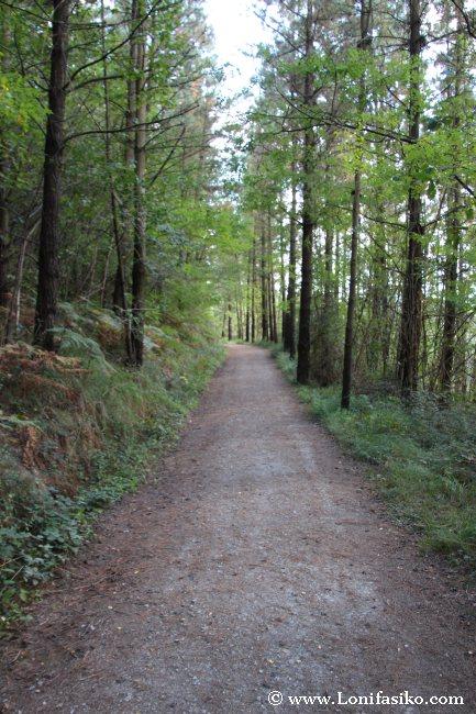 Trazado del tramo Liernia-Ormaiztegi, amplio y cómodo