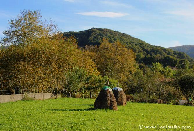 Entorno rural de Oarsoaldea