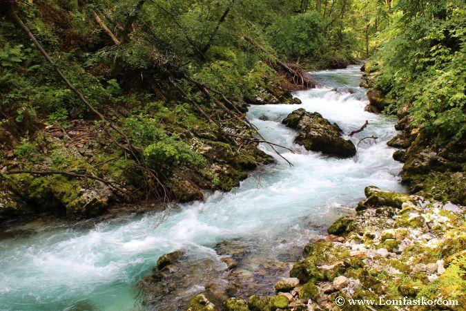 Las frías aguas del río Radovna