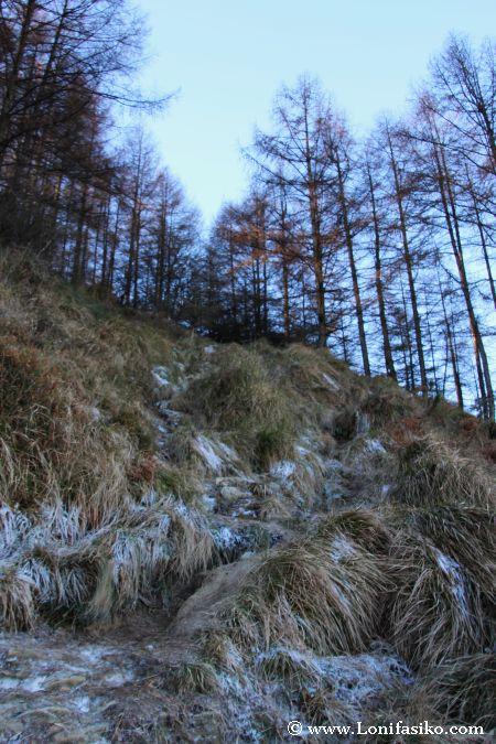 El sendero asciende de forma brusca y vertical