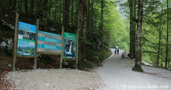 Acceso a la cascada Slap Savica