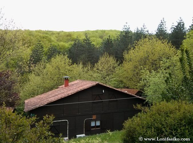 Cabaña rural en el bosque