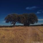 Embalse de Alqueva, paisajes del Alentejo