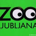 Zoo de Liubliana: Sensaciones agridulces y jaque a los cuentos infantiles