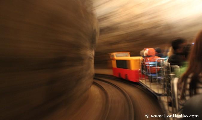 Visitar Cuevas Postojna tren visitas guiadas