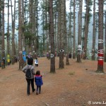 11 razones para compartir nuestros viajes en la red