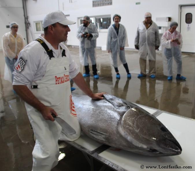 Maestro ronqueador atún rojo almadraba Cádiz