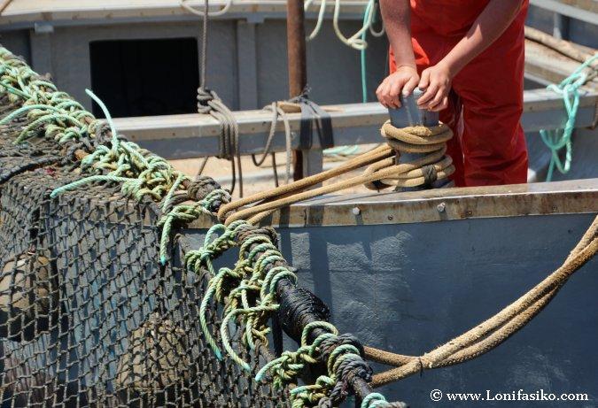 Redes Atún rojo de almadraba