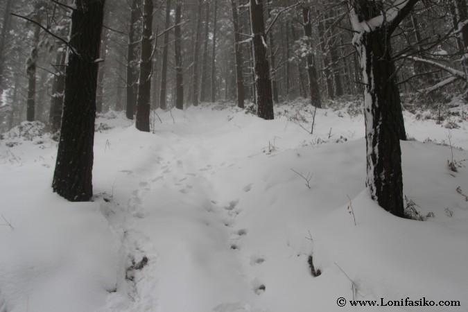 Fotos nieve Euskadi