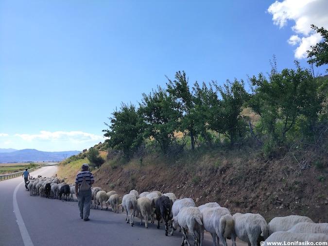 Conducir en Albania coche