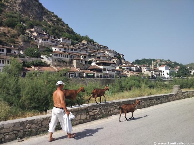 berat albania fotos