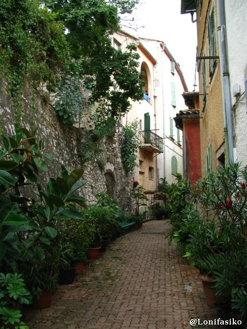 Flores y plantas en las calles de Villefranche