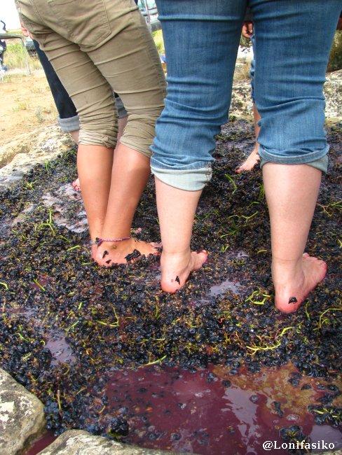 Pisando uva, trabajando en equipo