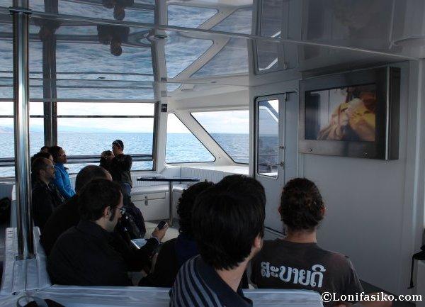 Atendiendo al vídeo explicativo sobre el atún rojo del Mediterráneo