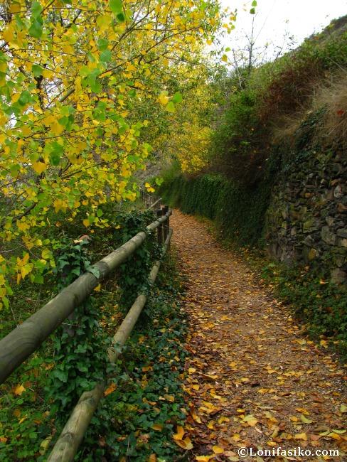 Otoño, una época ideal para visitar el nacedero del río Queiles