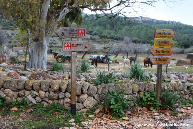 Rutas de senderismo que atraviesan la finca pública Es Galatzó