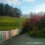 Espacios verdes en Artzentales