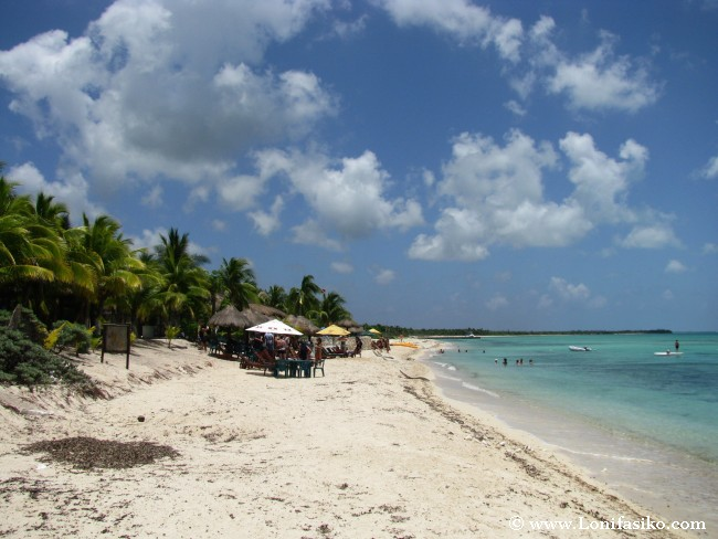 Playas de Cozumel: Playa Palancar
