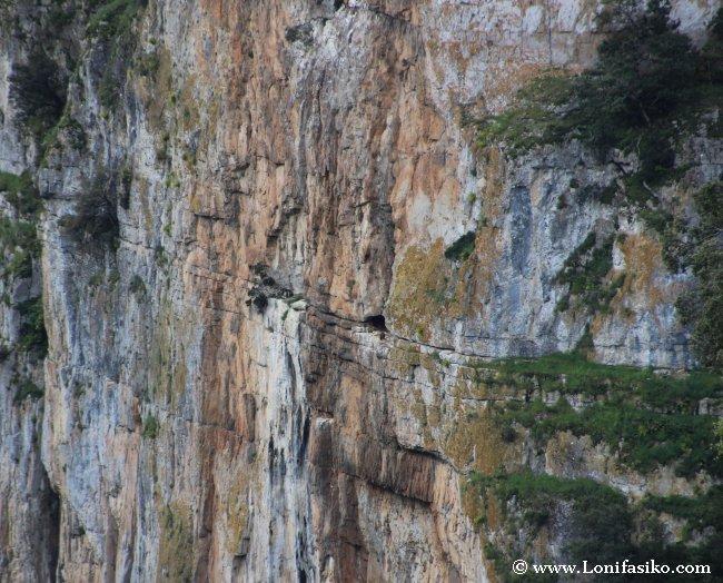 Geología de Navarra Foz de Arbaiun/Arbayún
