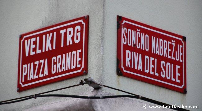 Esloveno Idioma oficial en Eslovenia
