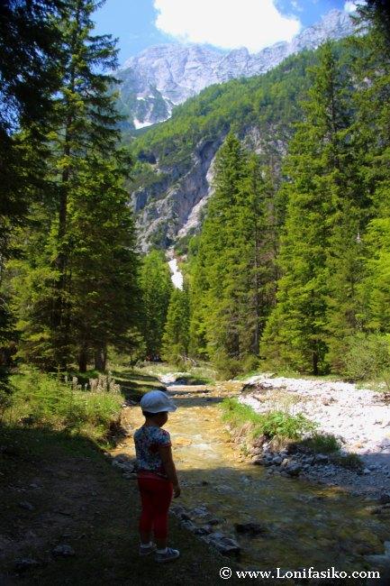 Las primeras aguas del río Sava Dolinka, en los Alpes Julianos