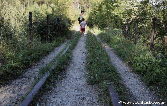 Raíles en el antiguo puente de Liernia