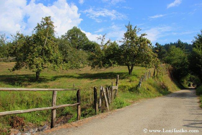 El último tramo de la vía verde discurre entre manzanos