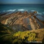 El txakoli, bebida de los Dioses de UribeFlysch, legado geológico en la costa de Bizkaia