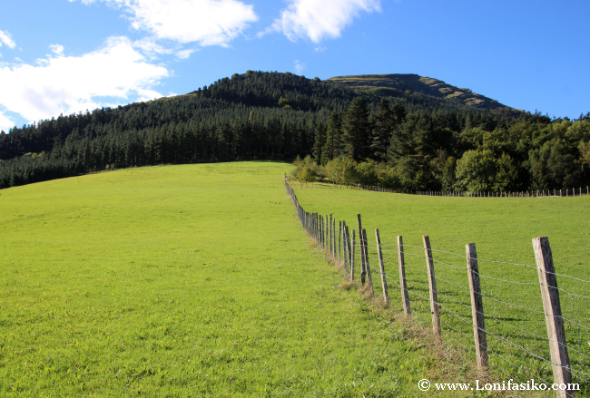 Prados verdes en el embalse de Urkulu