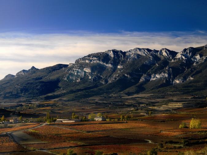 Rioja alavesa, un paisaje con sabor a vno
