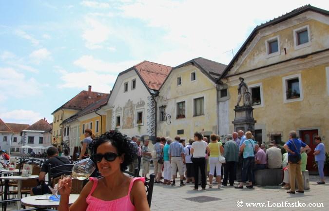 Vino blanco y terraceo en Radovjlica