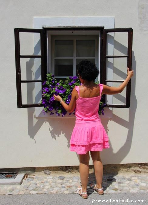 Las ventanas y las flores, luminosidad en Radovjlica