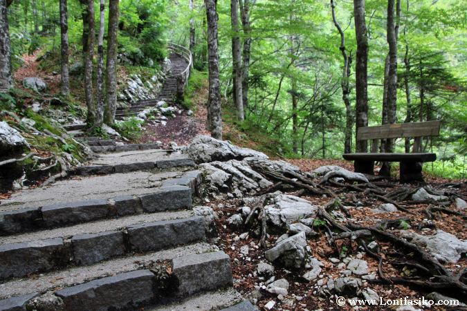 Camino de subida a la cascada Savica