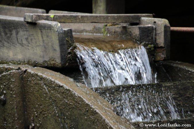 ¿Cómo funciona un molino de agua?