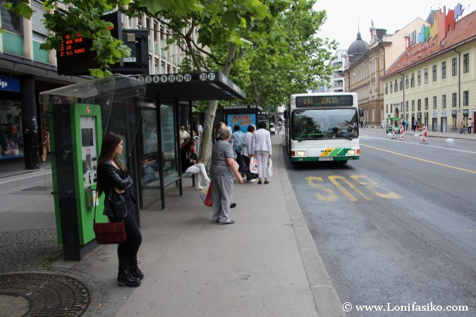 Autobús al zoo de Liubliana