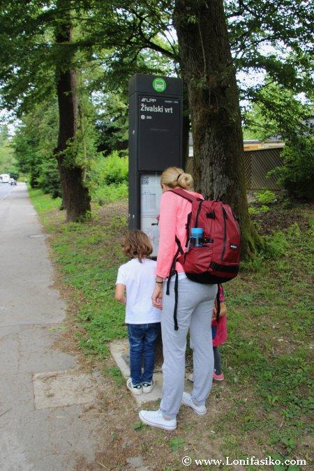 Parada de autobús zoo de Liubliana