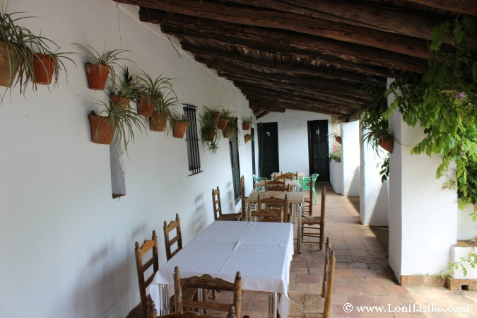 Comedor en terraza tipo patio andaluz