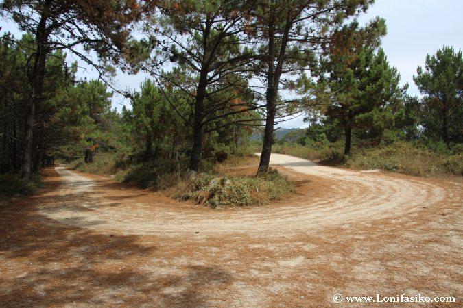 Ruta de cómo ir al faro Punta Subrido