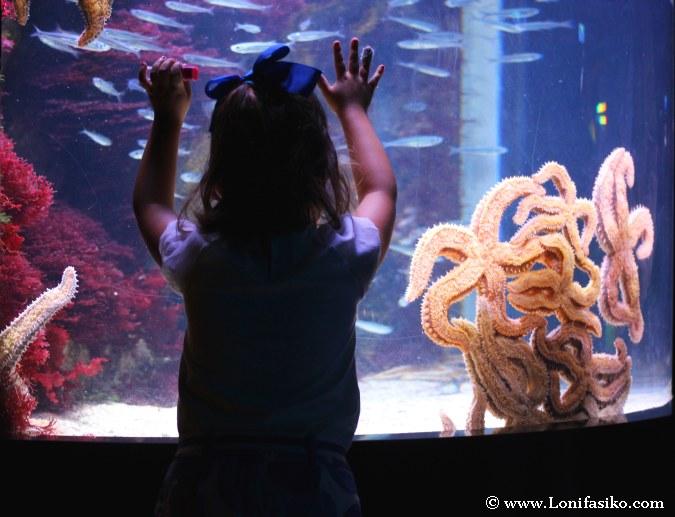 Visitar Donostia-San Sebastián con niños