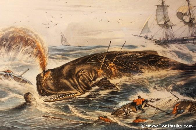 Pesca de la ballena en el Cantábrico