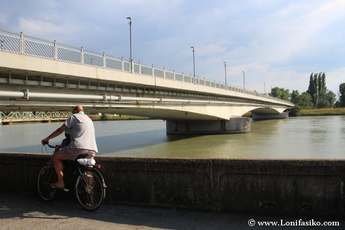 Qué hace en Ptuj: Paseo en bicicleta por la orilla del río Drava
