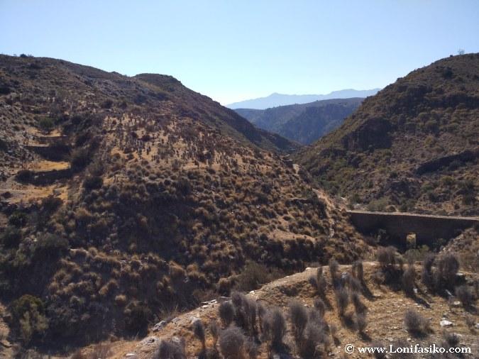Balates cultivo fotos Almería